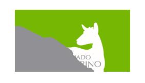 ANCAPRINA Logo